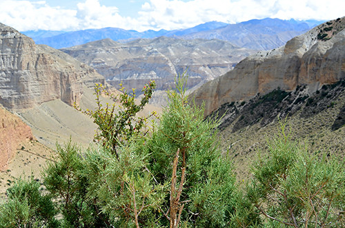 canyon-landschaft-mustang-trekking-tour