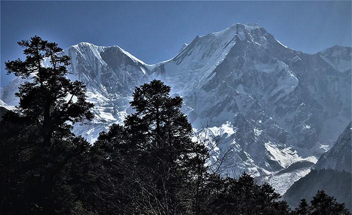 manaslu-trek-berglandschaften-im-wald