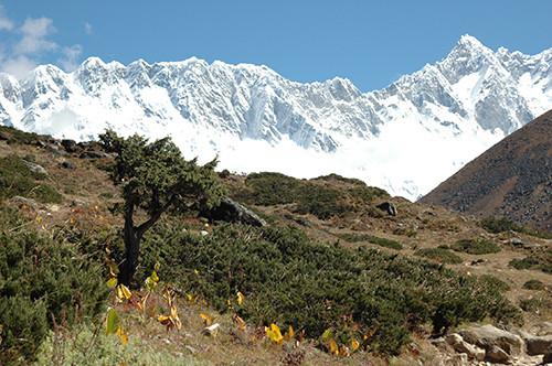 ama-dablam-trekking-everest