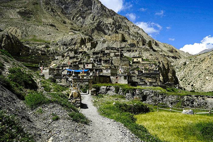 nar phu trekking tour ort phu